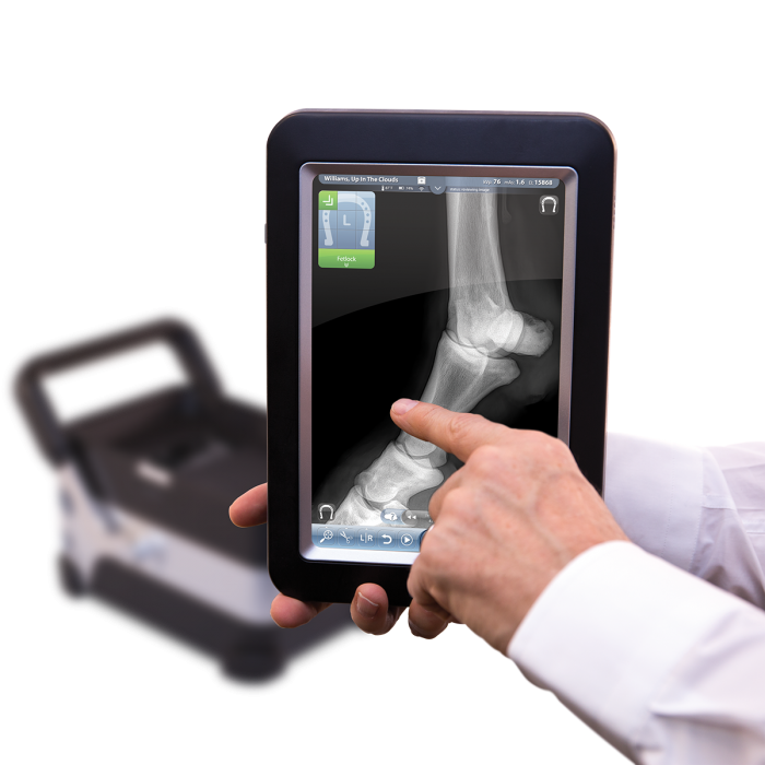 Cuattro Uno Portable Digital Radiography for Equine Practice