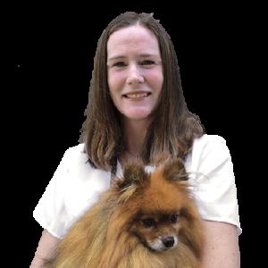 Veterinarian holding dog