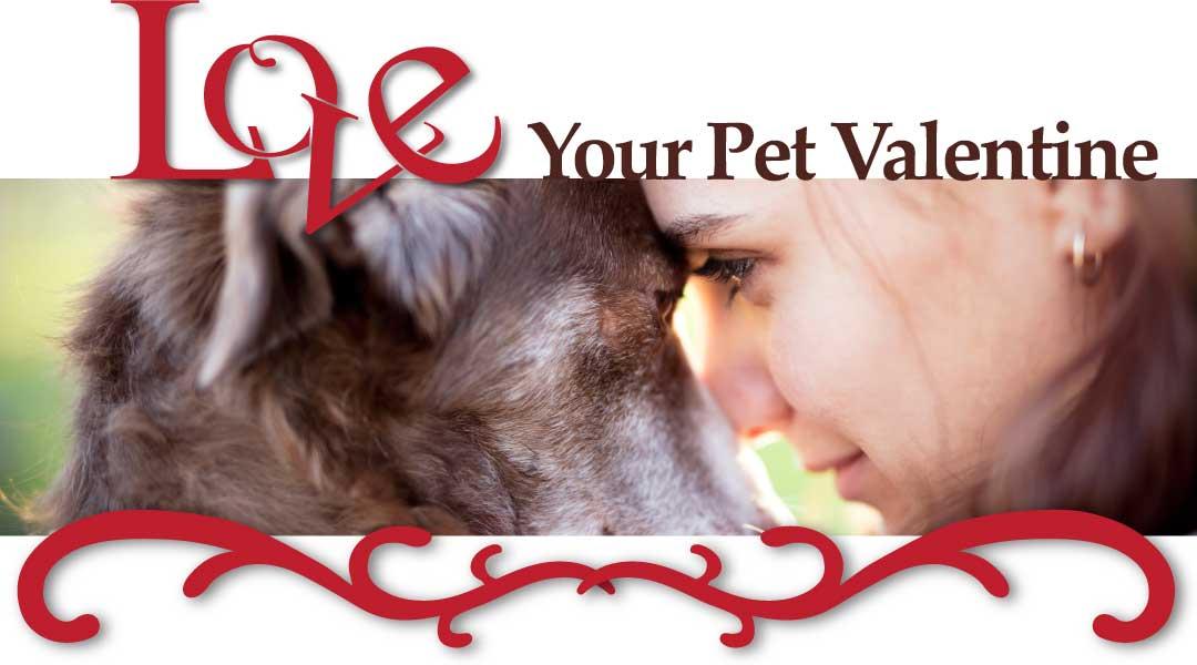 Love Your Pet Valentine
